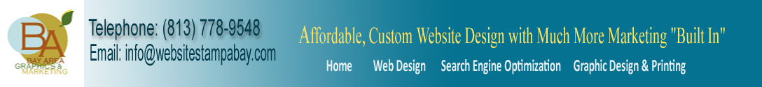 website design Tampa