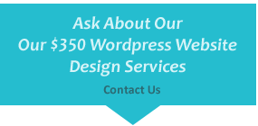 wordpress website design maintenance tampa
